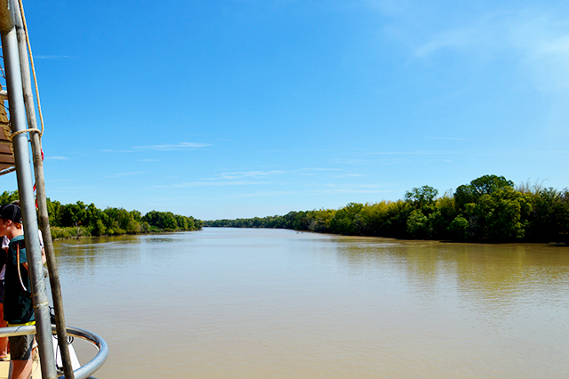 Water | Jumping Crocodile Cruise Darwin | Darwin must-do | lizniland.com