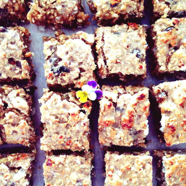 Peanut Butter Raisin Protein Slice | Clean eating snack | lizniland.com