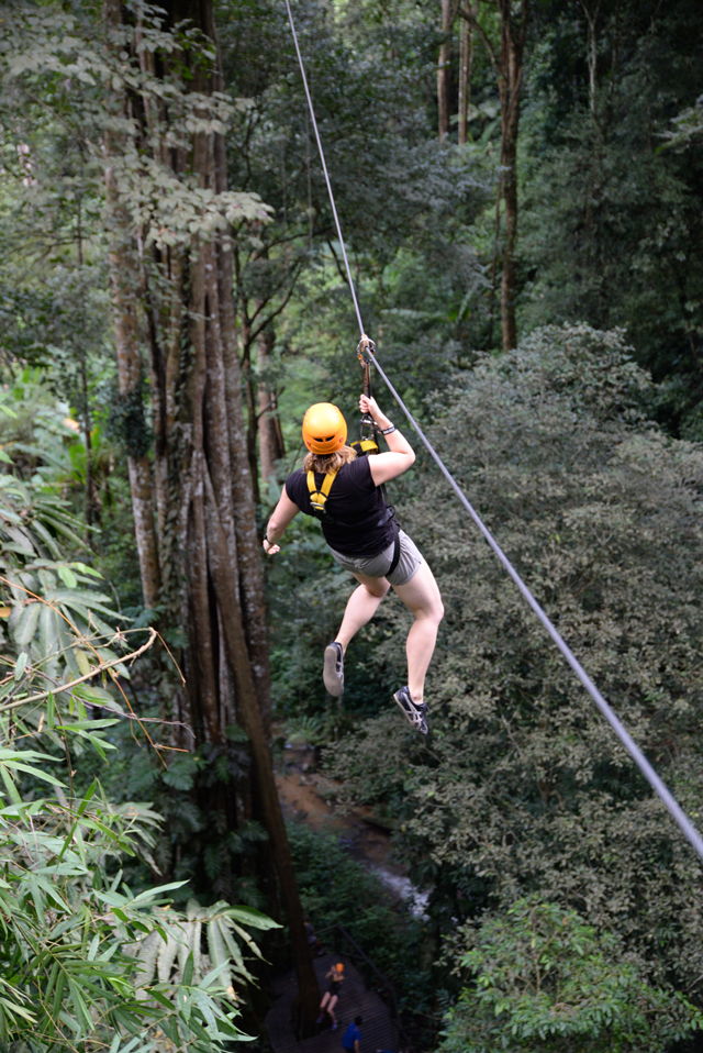 Just hanging out | When in Chiang Mai: Elephants & Ziplining | lizniland.com