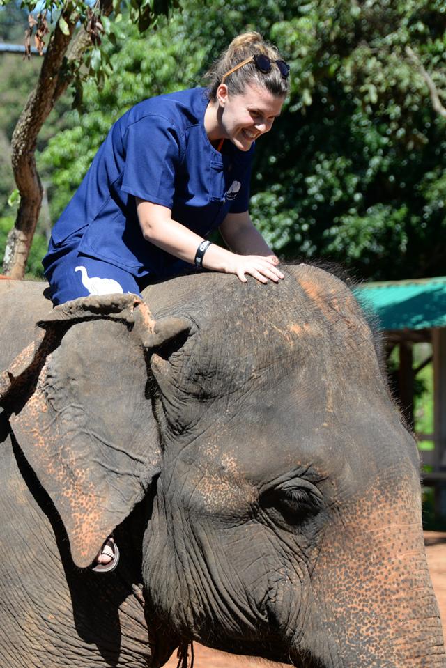 Bonding with my elephant at Baanchang Elephant Park | When in Chiang Mai: Elephants & Ziplining | lizniland.com