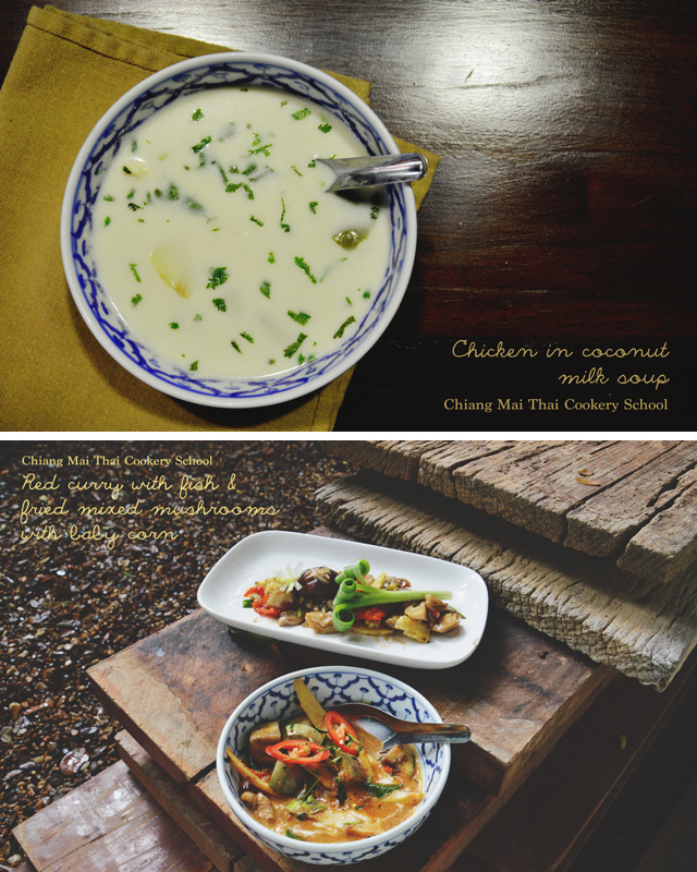 Coconut milk soup & red curry fish | When in Chiang Mai: Cooking classes | lizniland.com