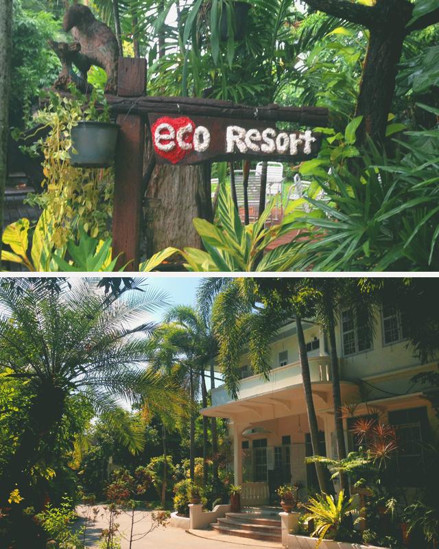 Eco Resort Chiang Mai | Chiang Mai: Culinary Adventures | lizniland.com