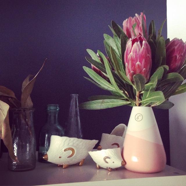 Pretty proteas | lizniland.com