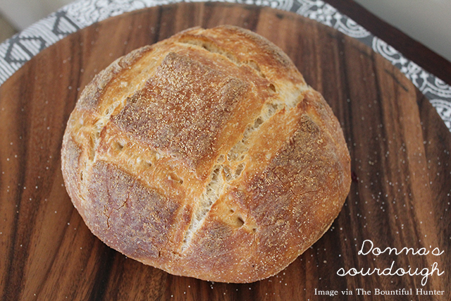 Donna's Sourdough | 25 questions | lizniland.com